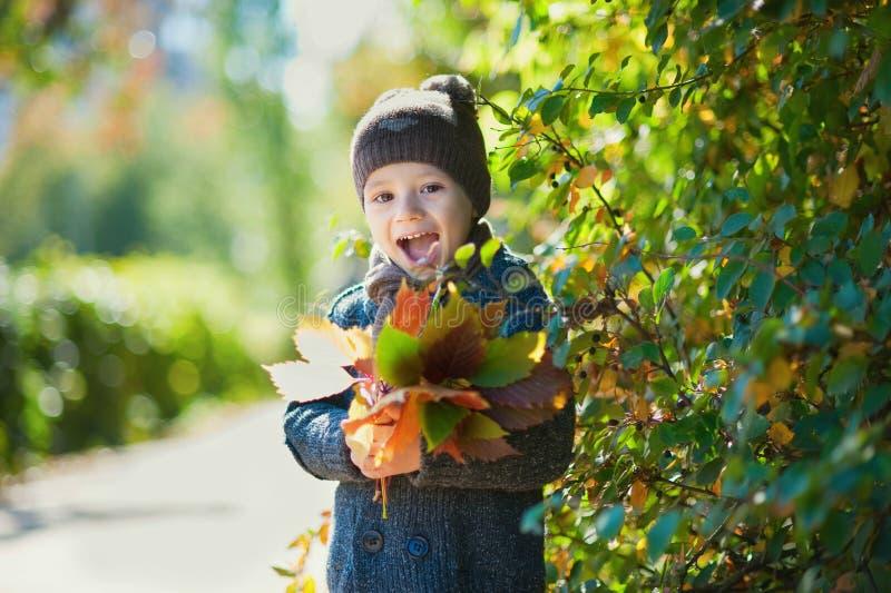 Niño feliz, muchacho, jugando en el parque, hojas que lanzan, jugando con las hojas caidas en otoño foto de archivo