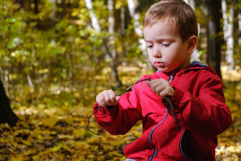 Niño feliz y otoño en un parque El niño se divierte que juega en hojas de la caída fotos de archivo