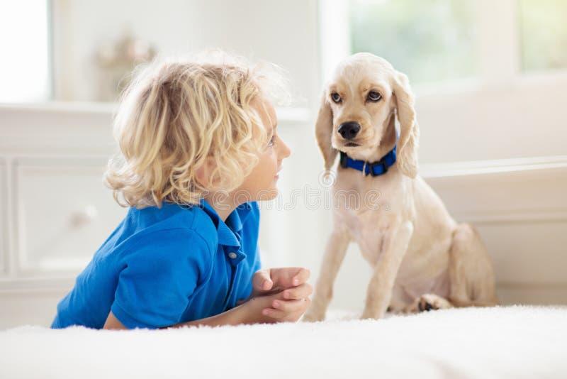 Niño jugando con perro Los niños juegan con cachorros imagen de archivo libre de regalías