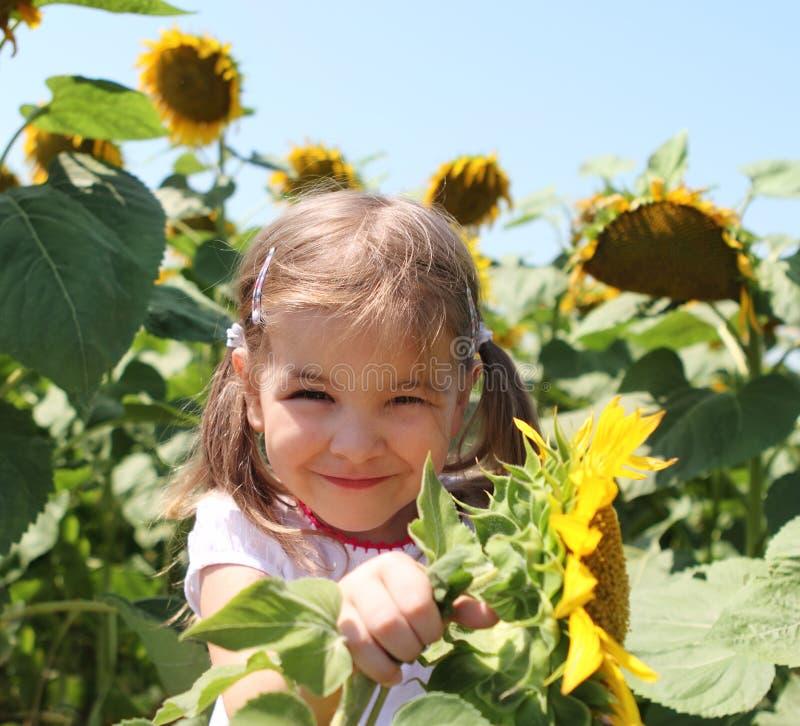 Niño lindo con el girasol en campo del verano fotos de archivo libres de regalías