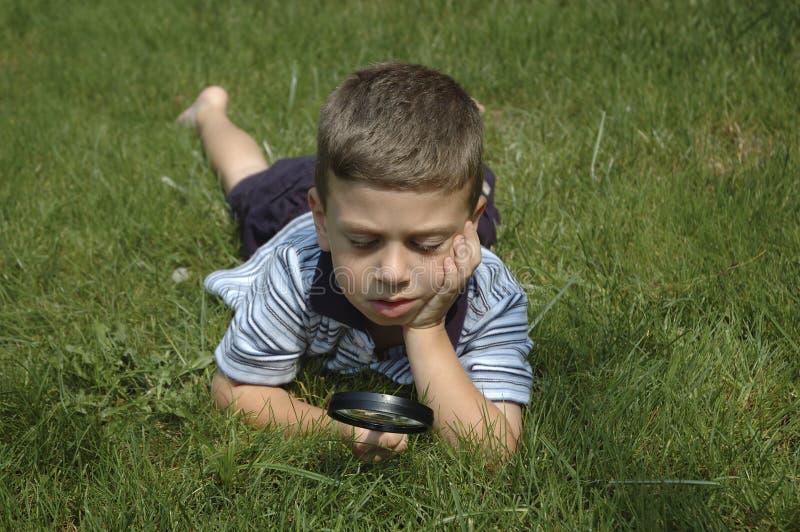 Niño observando la naturaleza foto de archivo libre de regalías