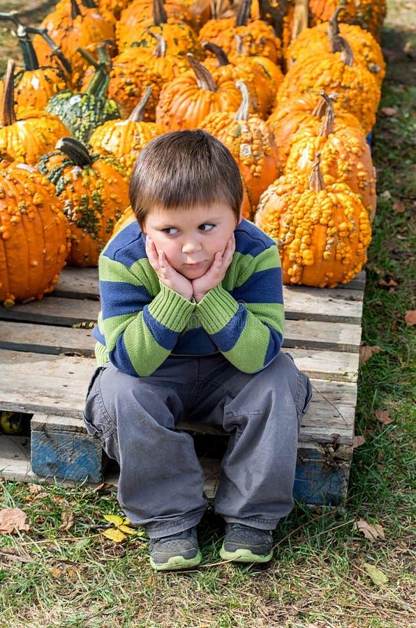 Niño pequeño abrumado en un remiendo de la calabaza fotografía de archivo libre de regalías