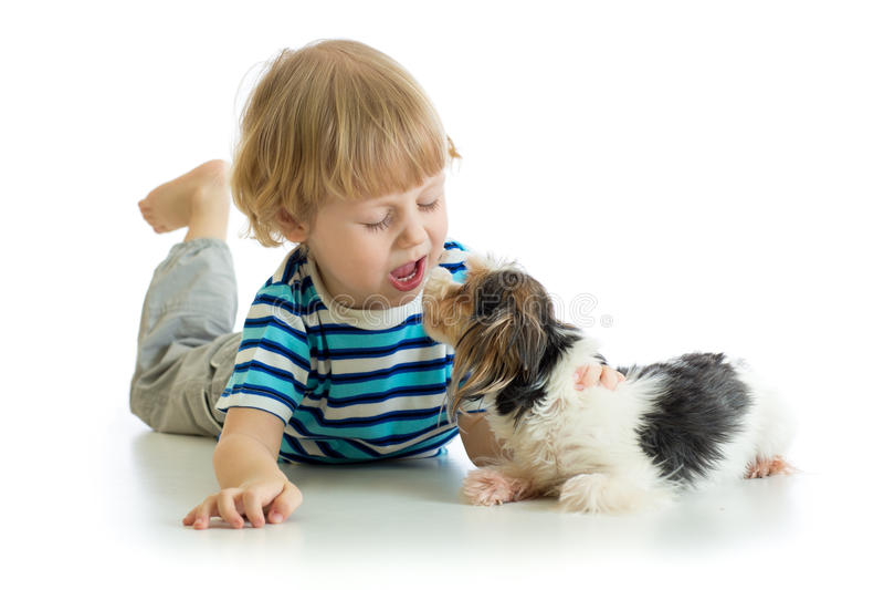 Niño pequeño divertido del niño que besa el perro de perrito Aislado en el fondo blanco imagenes de archivo