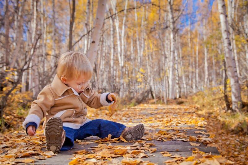 Niño pequeño en las hojas de otoño fotos de archivo