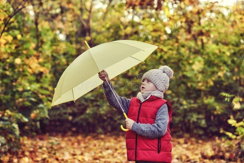 Niño pequeño en un paseo en el bosque del otoño foto de archivo