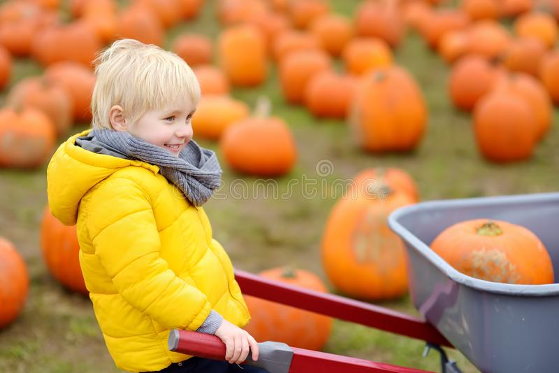 Niño pequeño en un viaje de una granja de la calabaza en el otoño Niño que se sienta en la calabaza gigante imagen de archivo