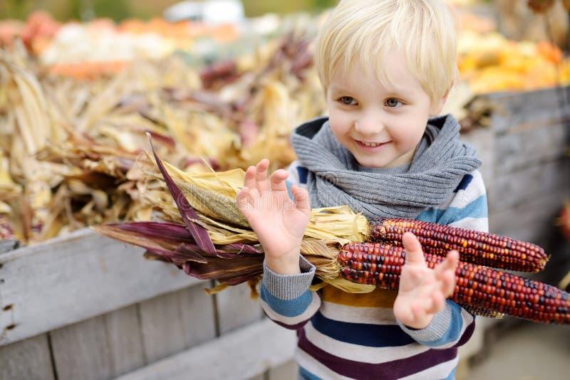 Niño pequeño en un viaje de una granja de la calabaza en el otoño Niño que sostiene maíz indio imágenes de archivo libres de regalías