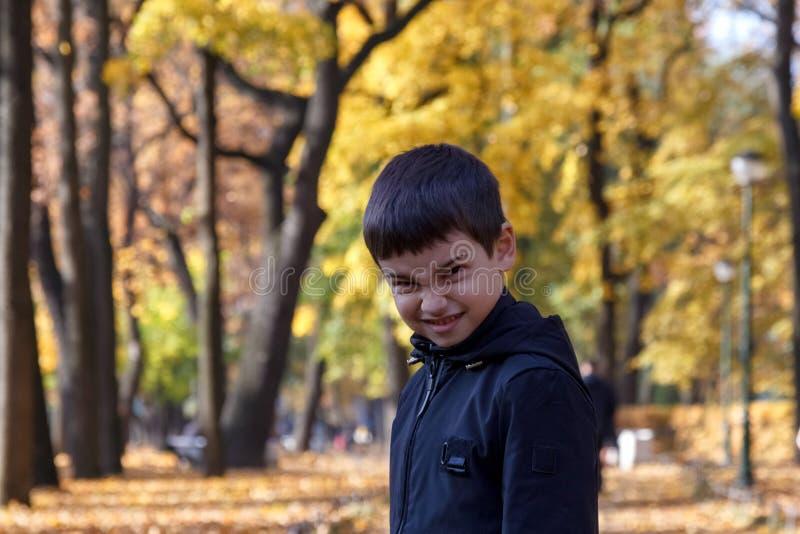 Niño pequeño enojado mismo que mira la cámara en fondo del parque del otoño entre las hojas amarillas foto de archivo libre de regalías