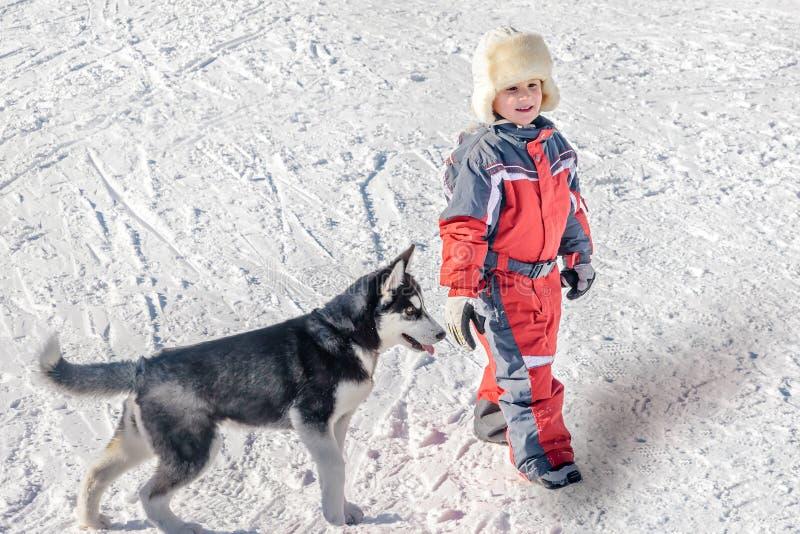 Niño pequeño feliz con el perro esquimal del perro de perrito en la nieve imagen de archivo