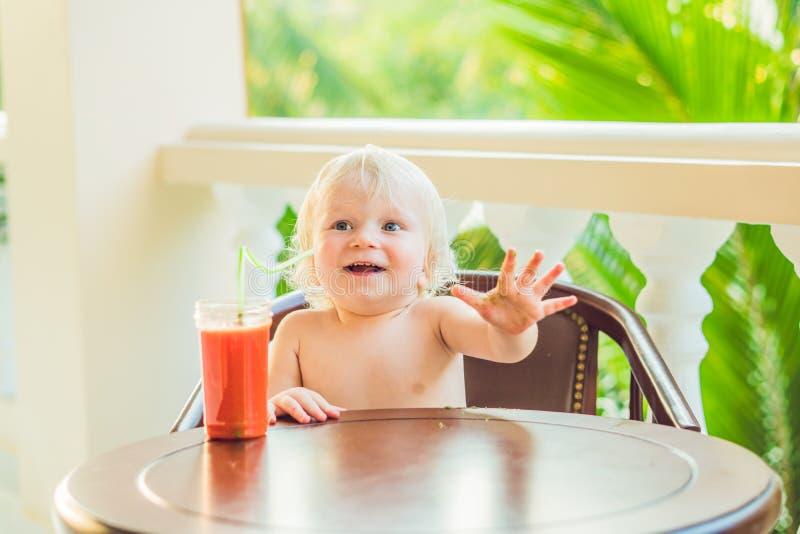 Niño pequeño feliz que bebe el smoothie selfmade sano imagen de archivo libre de regalías