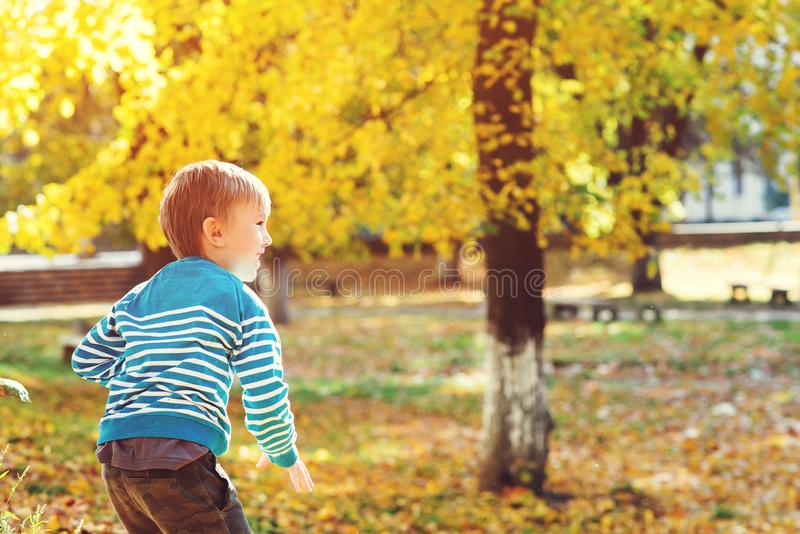 Niño pequeño feliz que juega en parque del otoño en día soleado caliente Otoño, niñez, y concepto de la gente Moda de los niños d imagenes de archivo
