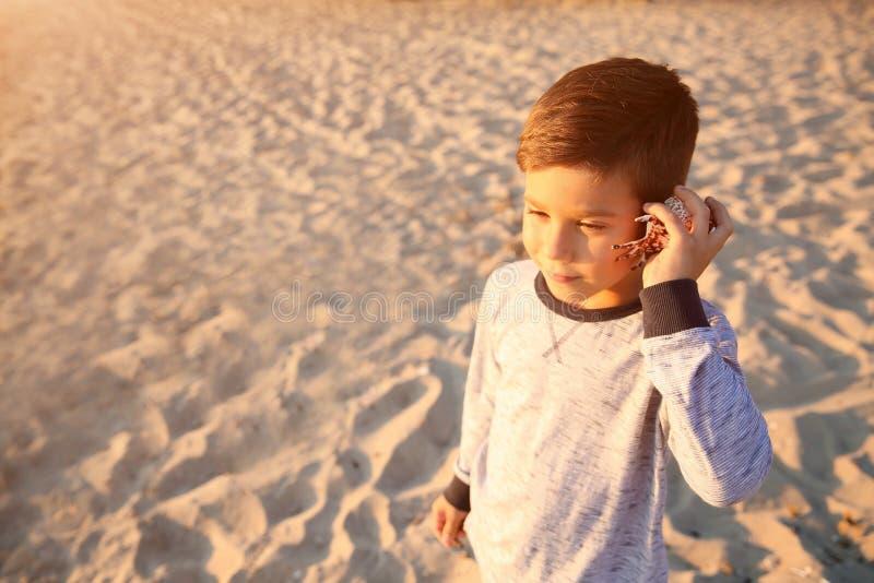 Niño pequeño lindo con la cáscara del mar en la playa foto de archivo libre de regalías