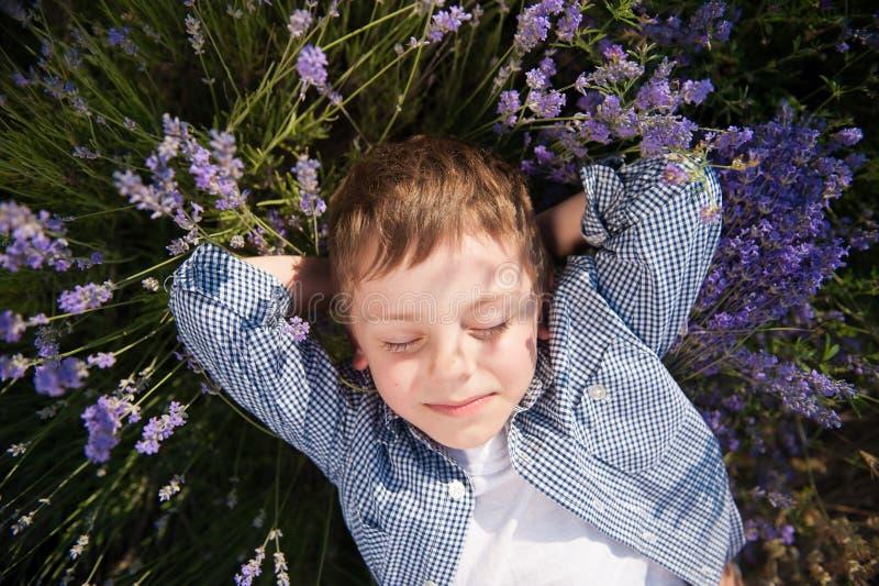Niño pequeño lindo que miente entre las flores en prado del flor en ocio del día de verano imágenes de archivo libres de regalías