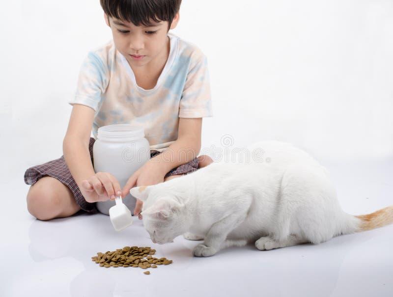 Niño pequeño que da la comida para el gato imagenes de archivo