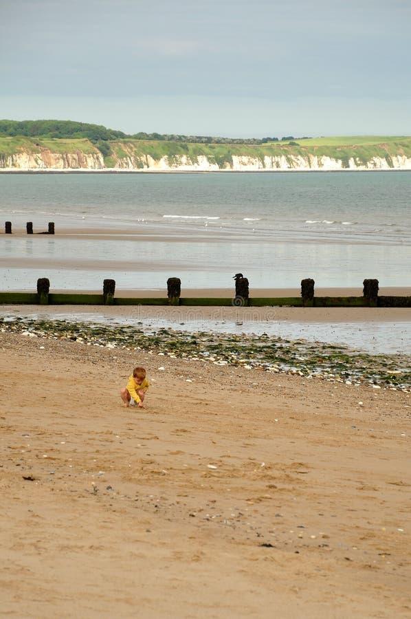 Niño pequeño que investiga la playa imagen de archivo libre de regalías