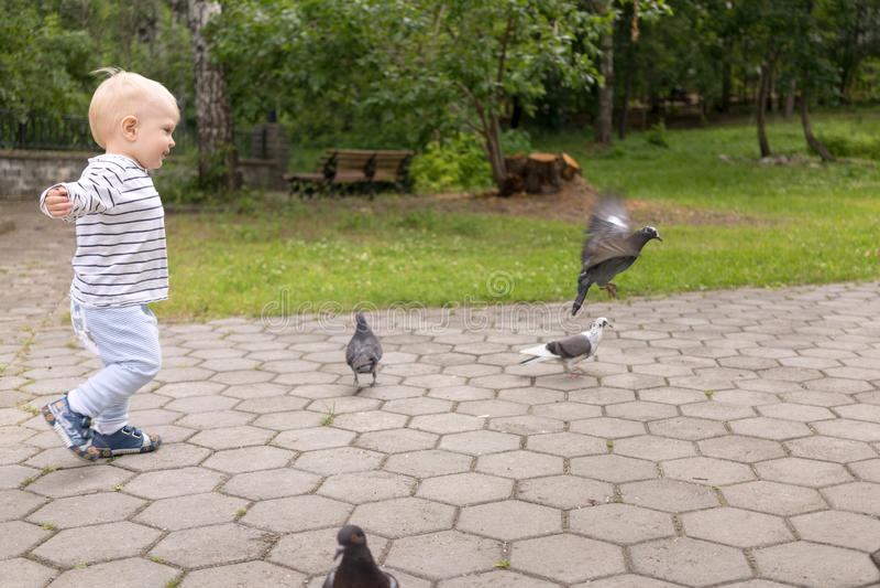 Niño pequeño que juega con las palomas en el parque del verde del verano imagen de archivo