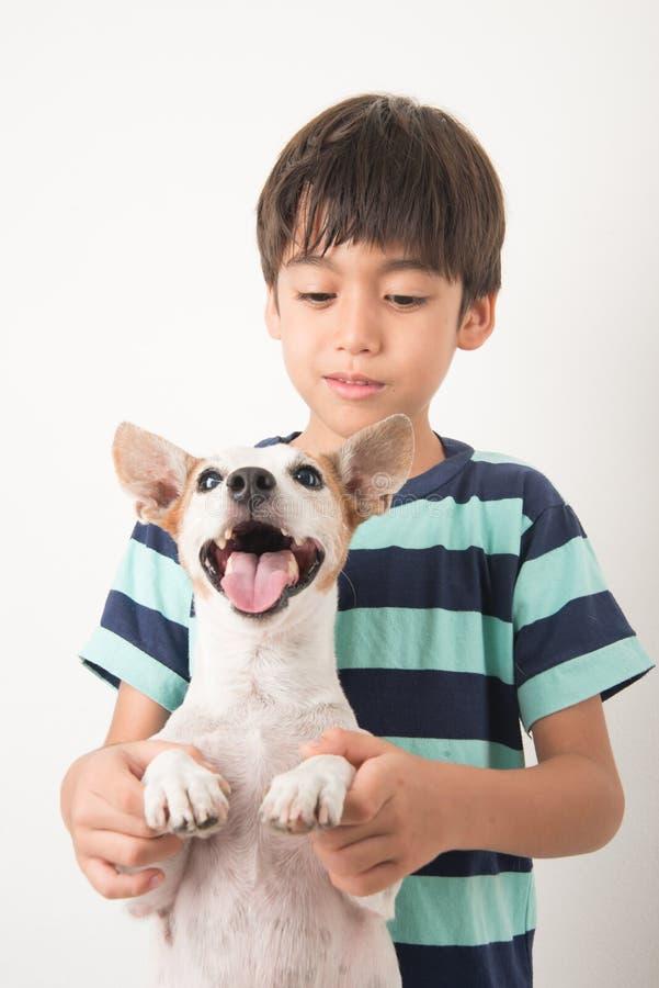 Niño pequeño que juega con su enchufe Russel del perro del amigo fotos de archivo