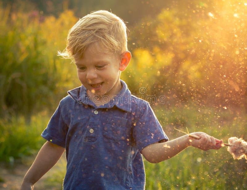 Niño pequeño que juega en el verano Sun fotografía de archivo