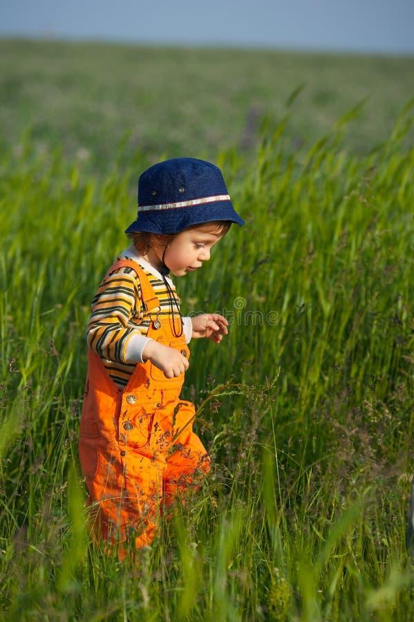 Niño pequeño que recorre en hierba fotos de archivo