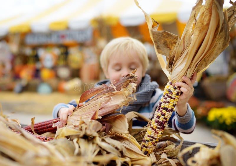 Niño pequeño que se divierte en un viaje de una granja de la calabaza en el otoño Niño que elige maíz indio imagen de archivo
