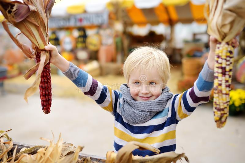 Niño pequeño que se divierte en un viaje de una granja de la calabaza en el otoño Niño que sostiene maíz indio fotos de archivo