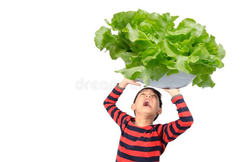 Niño pequeño que toma el cuenco grande enorme de verdura sobre su cabeza en el fondo blanco fotos de archivo