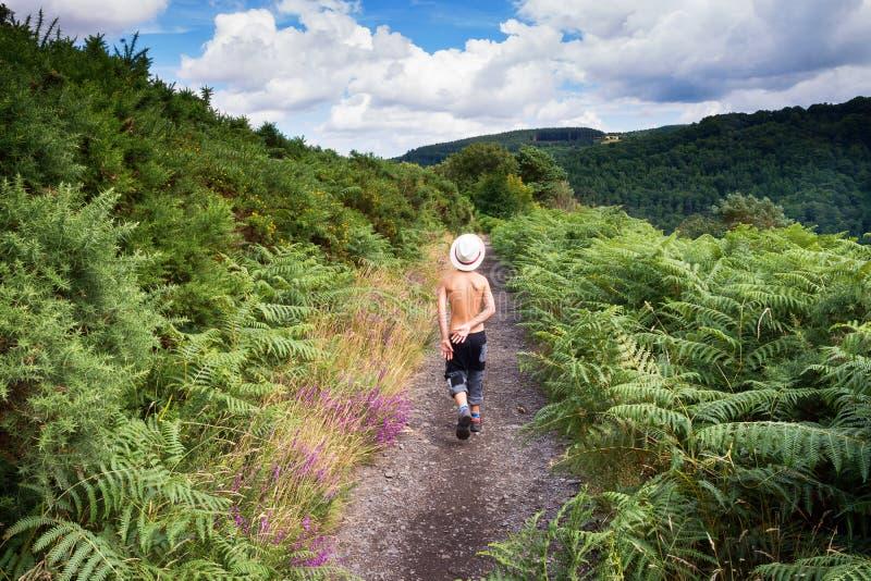 Niño que camina en la trayectoria de la naturaleza, Dartmoor, Inglaterra foto de archivo