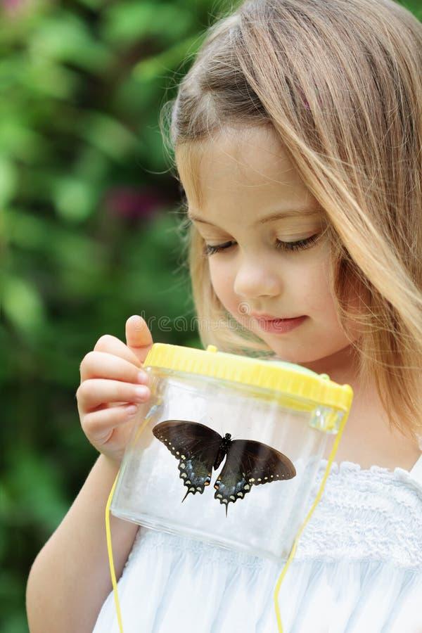 Niño que captura mariposas foto de archivo