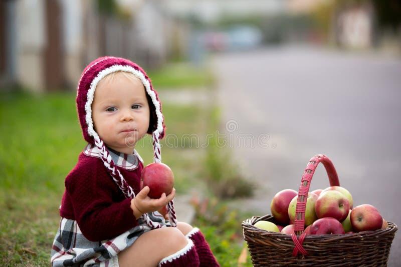 Niño que come manzanas en un pueblo en otoño Pequeño juego del bebé imágenes de archivo libres de regalías