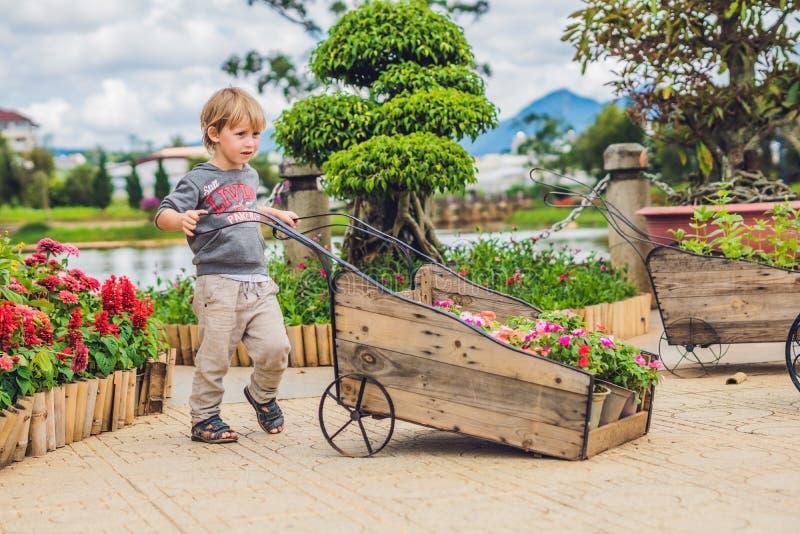 Niño que empuja la carretilla de la rueda en el jardín pequeño niño dulce fotografía de archivo libre de regalías