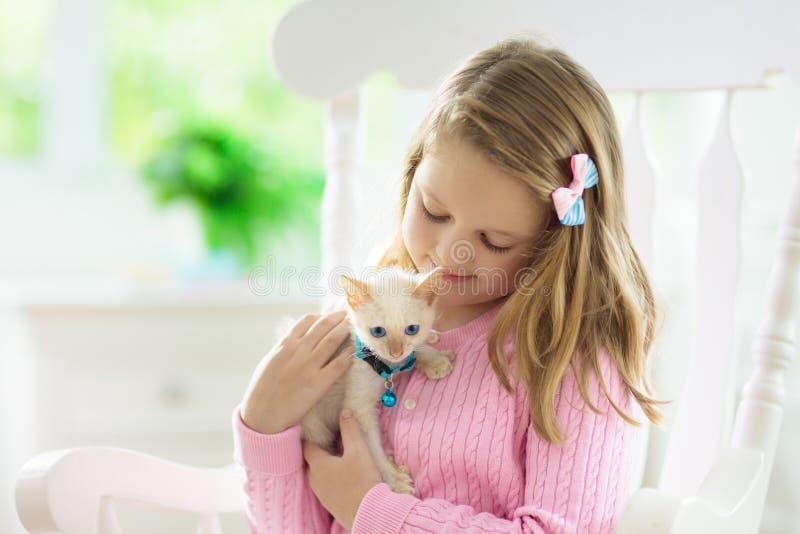 Niño que juega con el gato del bebé Ni?o y gatito imágenes de archivo libres de regalías
