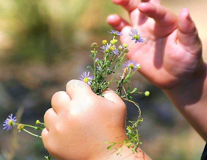 Niño que juega con las flores foto de archivo