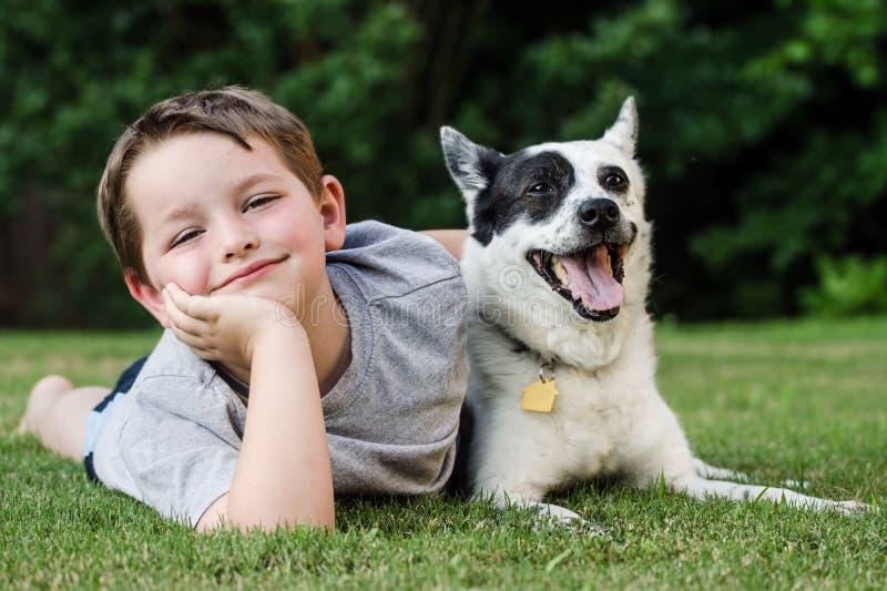 Niño que juega con su perro casero fotografía de archivo