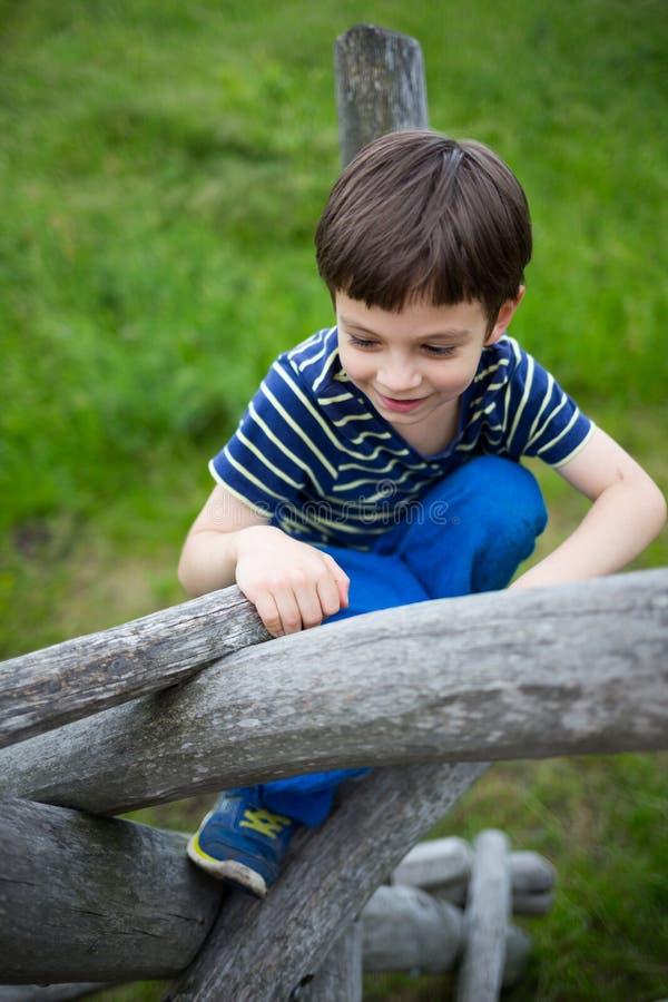 Niño que juega en el árbol que sube de la naturaleza fotografía de archivo