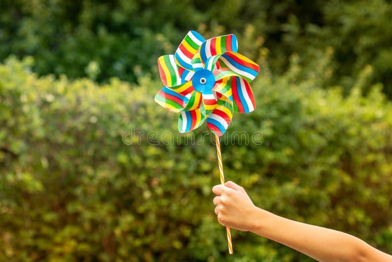 Niño que sostiene el molinillo de viento colorido fotos de archivo libres de regalías