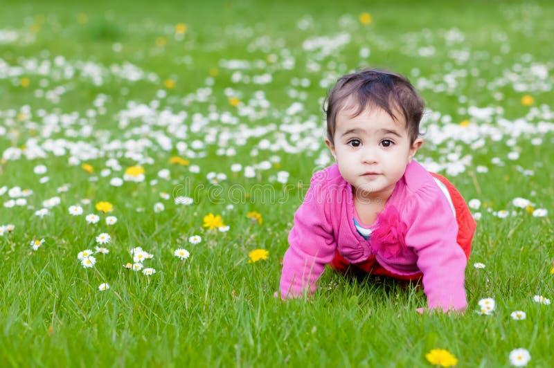 Niño rechoncho lindo que se arrastra en la naturaleza de exploración de la hierba al aire libre en el contacto visual del parque fotos de archivo libres de regalías