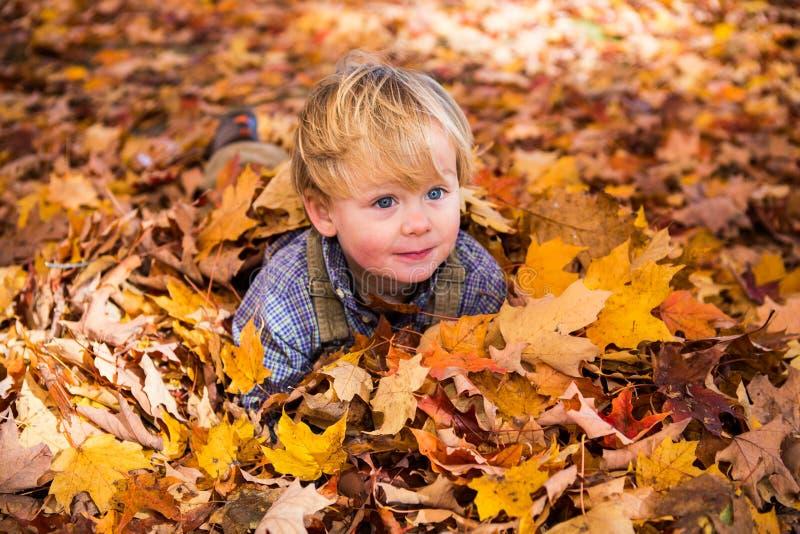 Niño rubio que juega en las hojas de la caída foto de archivo