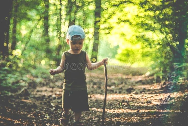 Niño solamente, caminante impávido en bosque con un palillo imágenes de archivo libres de regalías