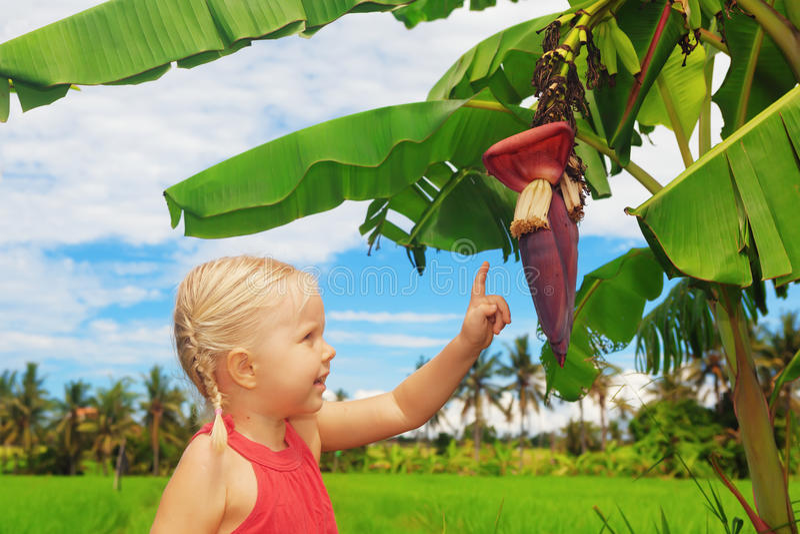 Niño sonriente que explora la naturaleza - flor y frutas del plátano imagen de archivo