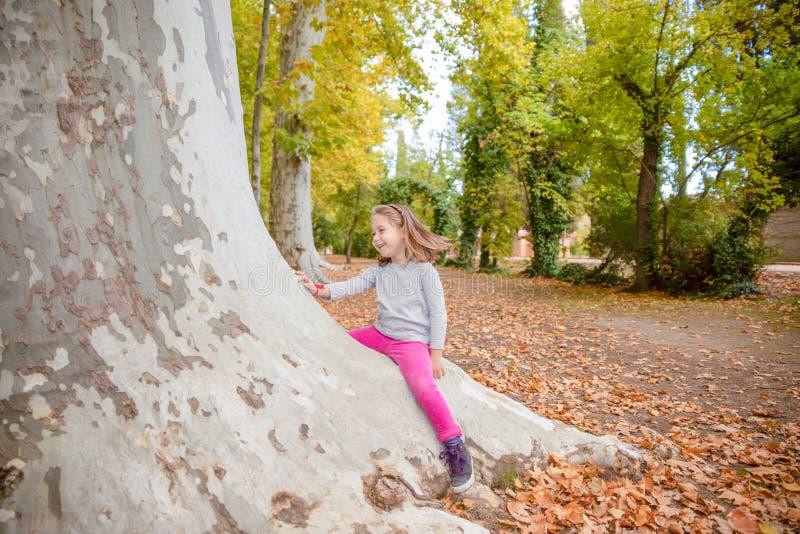 Niño sonriente que se sienta en tronco de árbol grande en el bosque del parque foto de archivo libre de regalías