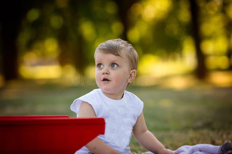 Niño y flores fotos de archivo libres de regalías