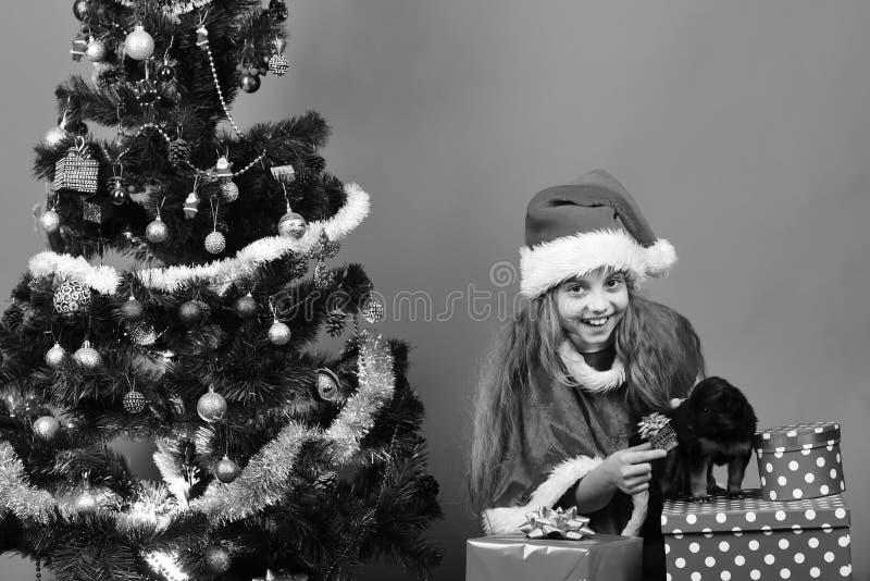Niño y perro felices con el regalo de la Navidad cerca del árbol de Navidad fotos de archivo