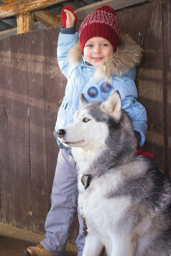 Niño y perro felices el Nochebuena Niño que se divierte con el perro esquimal en casa foto de archivo