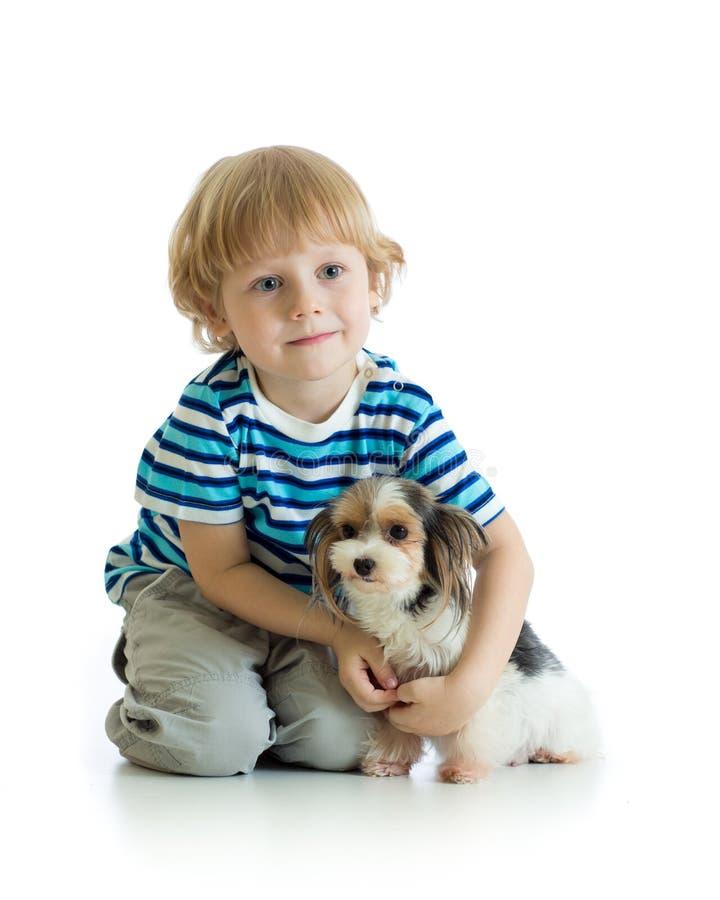 Niño y terrier de Yorkshire Aislado en el fondo blanco imagenes de archivo