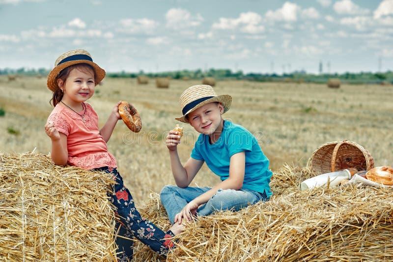 Niños alegres en una comida campestre del verano en el campo fotos de archivo libres de regalías
