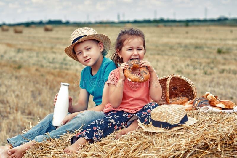 Niños alegres en una comida campestre del verano en el campo fotografía de archivo