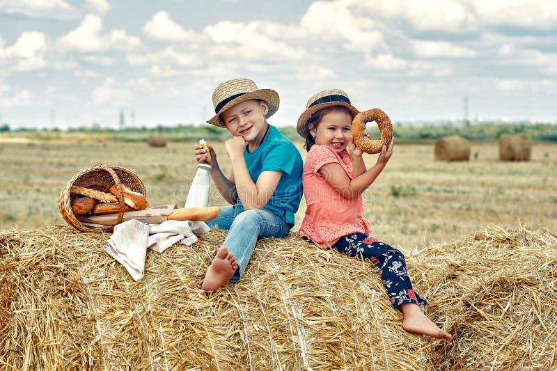Niños alegres en una comida campestre del verano en el campo foto de archivo