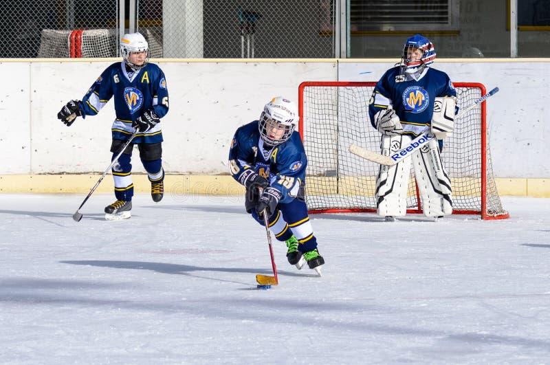Ni 241 Os Alemanes Que Juegan A Hockey Sobre Hielo Foto