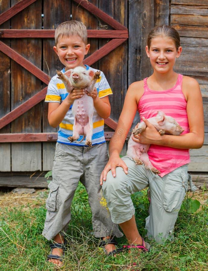 Niños con el cochinillo imagenes de archivo