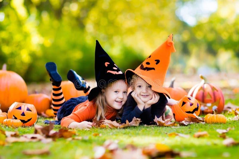 Niños con las calabazas en disfraces de Halloween fotografía de archivo libre de regalías